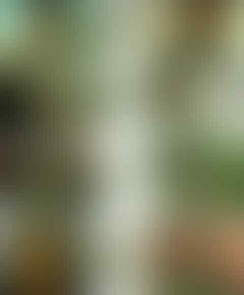 Sindir Abu Janda yang Laporkan Rocky Gerung, Akhmad Sahal: Norak Banget Sih