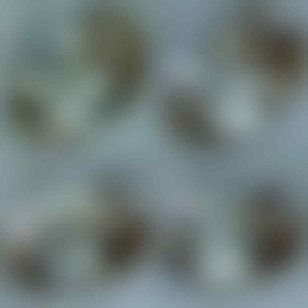 Lelang Iseng Batu Antik Singkat Sd 15 04 18 (21:22)