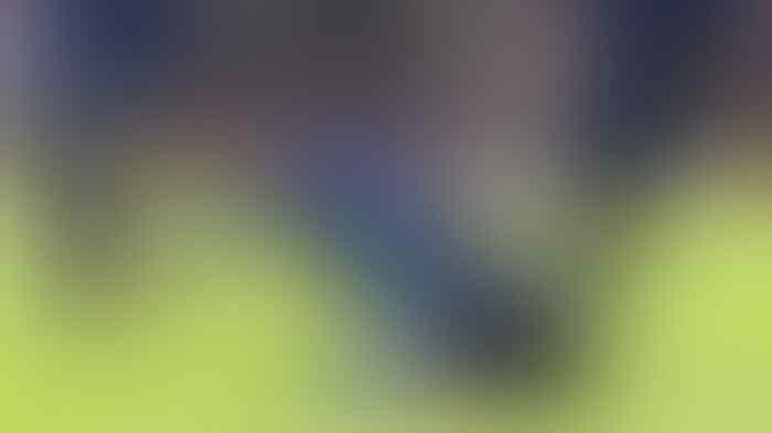 Southampton Vs Chelsea: Tertinggal 0-2, The Blues Balikkan Skor Jadi 2-3