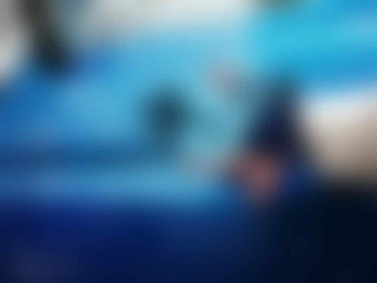 [NEWS] - Honor Fans Kaskus Hunting Foto Bareng di TMII