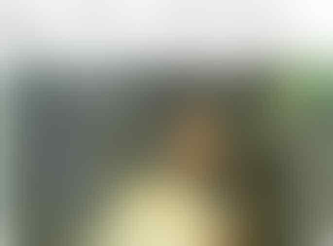 Jalani Sidang Ujaran Kebencian, Ahmad Dhani Didampingi Ratna Sarumpaet, Asma Dewi
