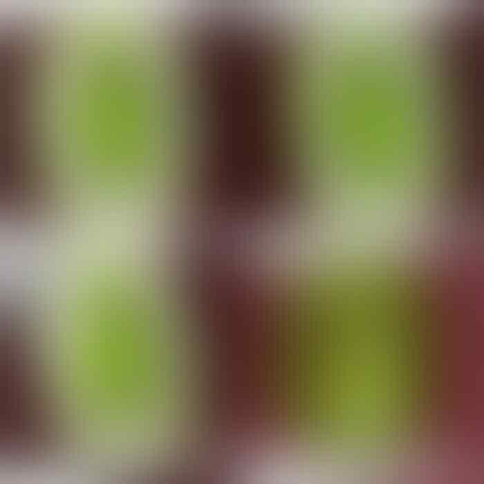 LELANG KILAT CLOSED 17-04-18 JAM 23:15