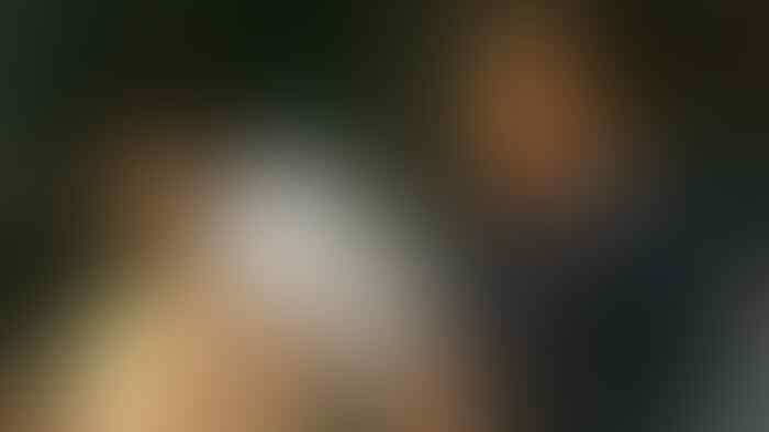 Waketum PP Angkatan Muda Partai Golkar: Stop Gaduh Soal Partai Setan