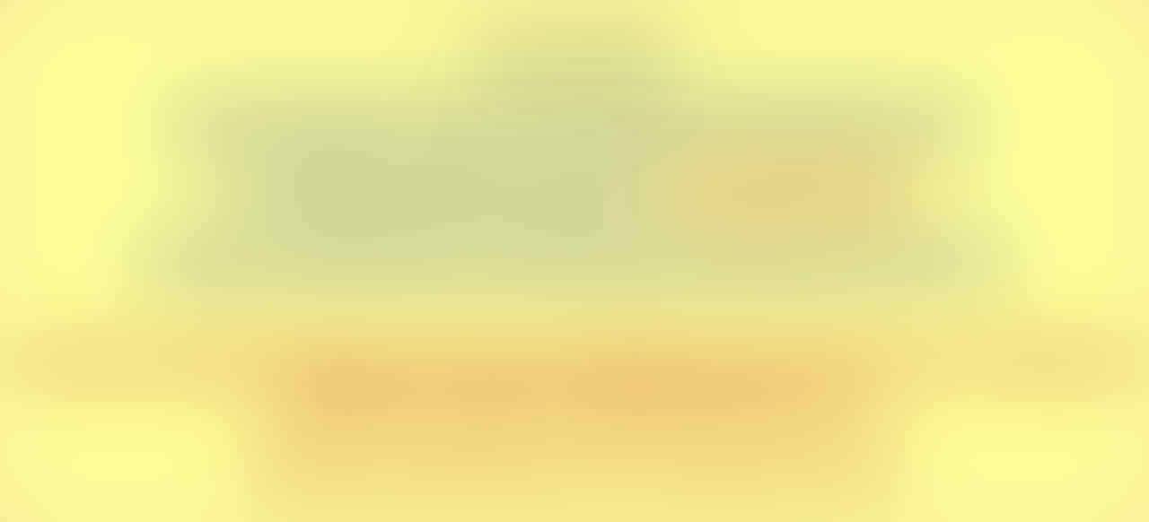 Terjual SEPATU VANS PREMIUM WAFFLE CODE ICC   DT  2e63fcc04e