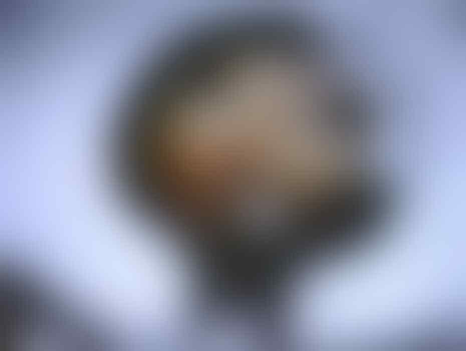 PENEMUAN JASAD ALIEN / UFO PALING NYATA DITEMUKAN DI KANADA