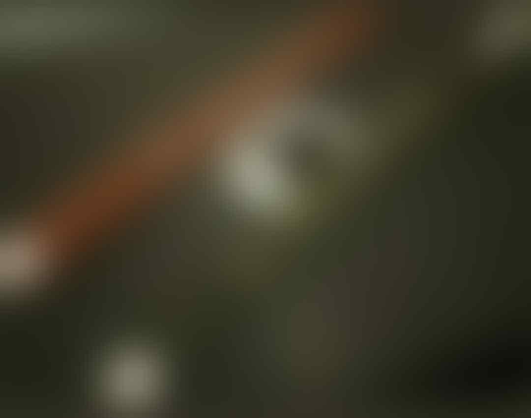 Brimob Bersenjata Datangi Kantor Gerindra Jateng