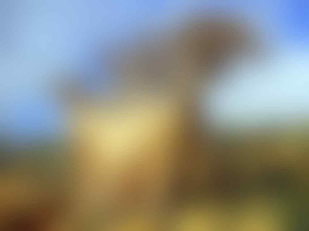 3Tempat Wisata Mengerikan Sepanjang Sejarah ★★★★★