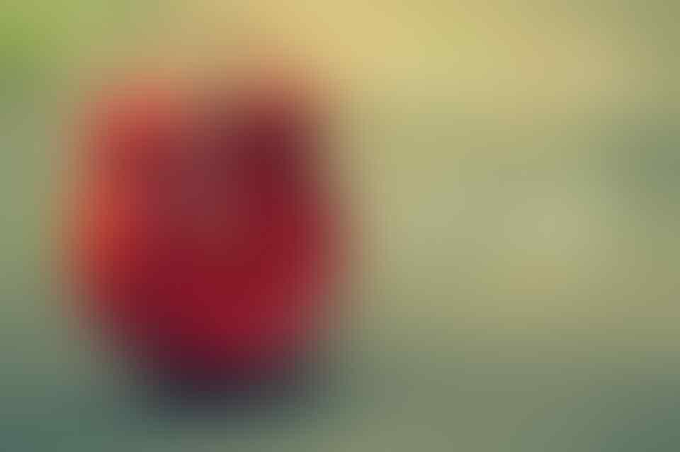 Pemimpin Harus Punya VUCA: Vision, Understanding, Clarity, dan Agility