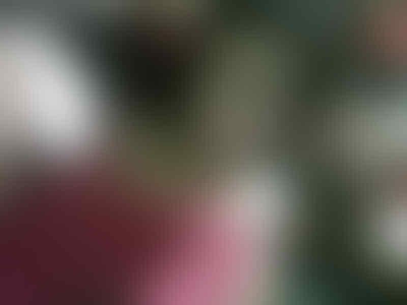 Mucikari Keyko Kembali Hebohkan Surabaya dengan Prostitusi Onlinenya