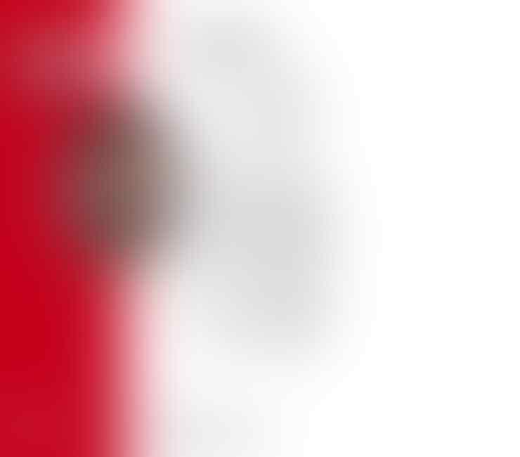 Breaking News: Nabil Fekir perkuat Liverpool musim depan?