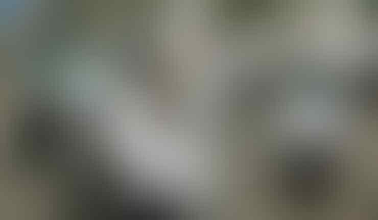 Apel Siaga PDIP Diwarnai Konvoi Motor, Polisi Solo Berani Tilang?