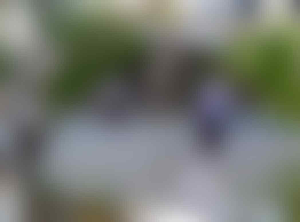 Pelaku Bom Bunuh Diri di Gereja Santa Maria Tak Bercela Tewas