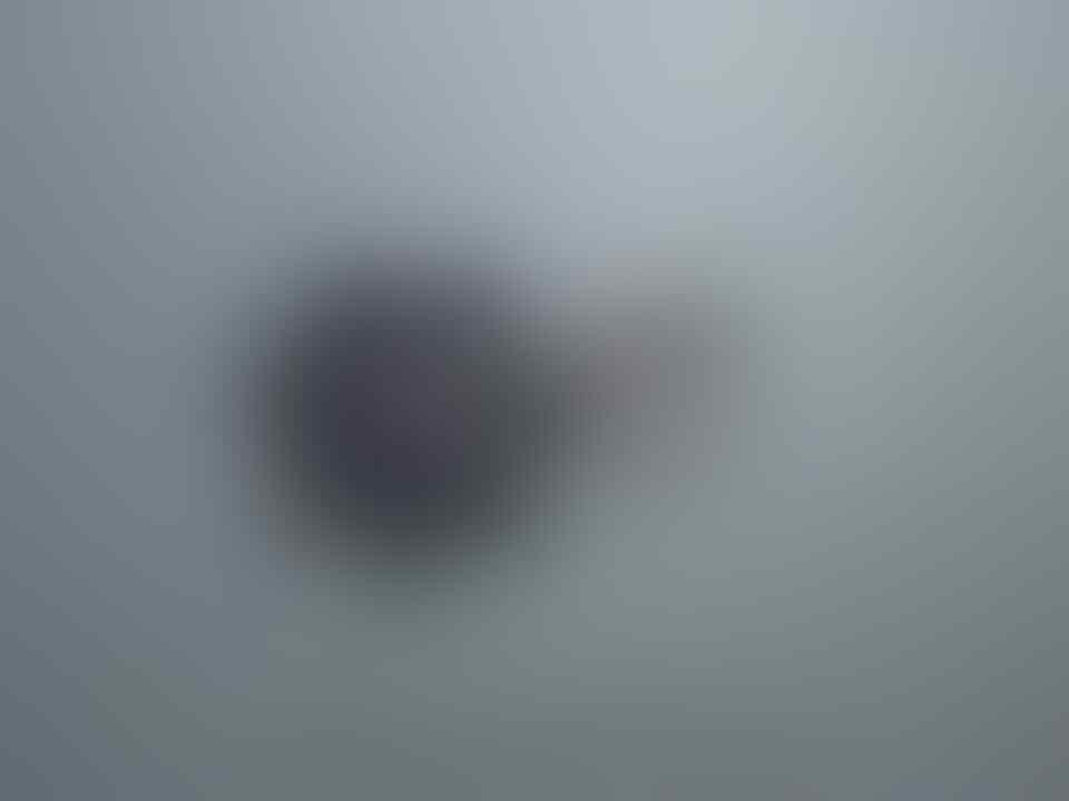 SAPPHIRE VETTE A5010L12S COOLING FAN VGA