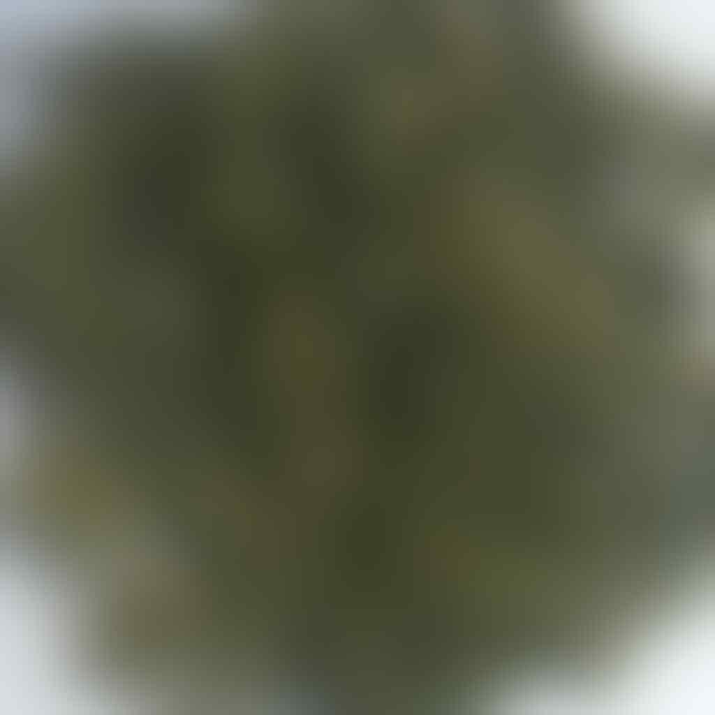 Teh hijau pekoe peko pekko peco kiloan grosir bulk green tea