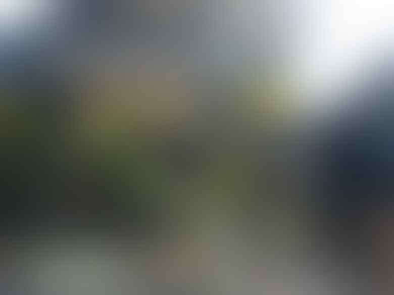 Pelaku Bom Bunuh Diri di GKI Kelahiran Banyuwangi, Anak Juragan Jamu