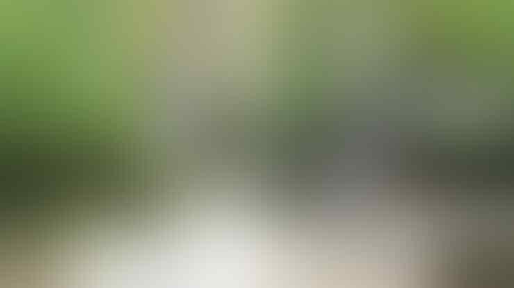 Sri Gethuk Air Terjun Yang Penuh Misteri