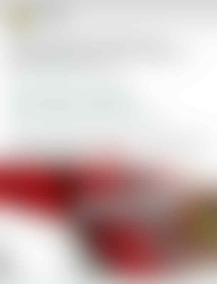 Jokowi Didesak Copot BG Dan Tito