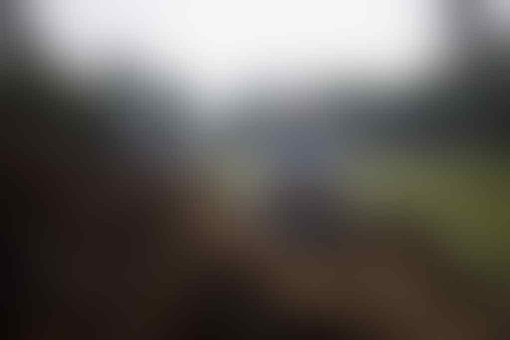 Ernest Bikin Kampanye Supaya Kita Sadar Efek Negatif Dari Perkebunan Sawit