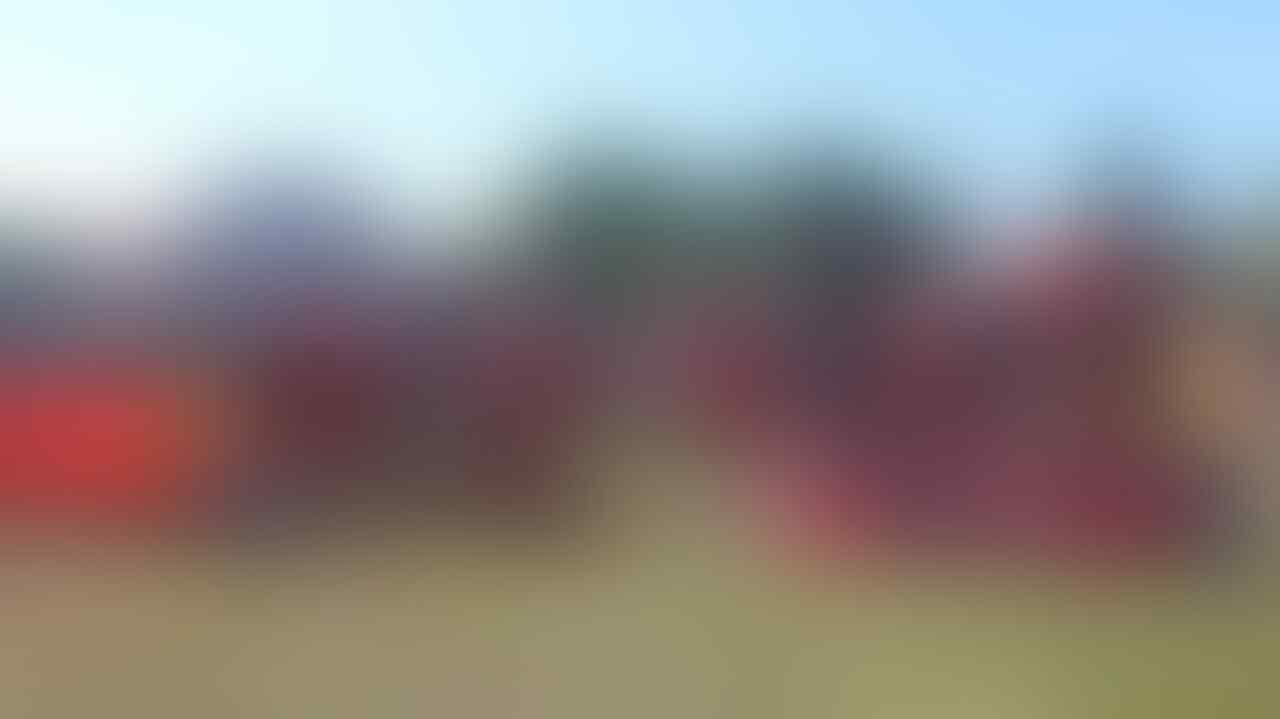 Sumsel Tingkatkan Kesiapsiagaan Cegah Karhutla Jelang Asian Games