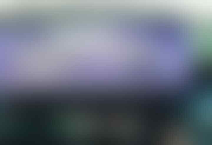 Aksi Bela Mohamed Salah Bakal Digelar di Jakarta