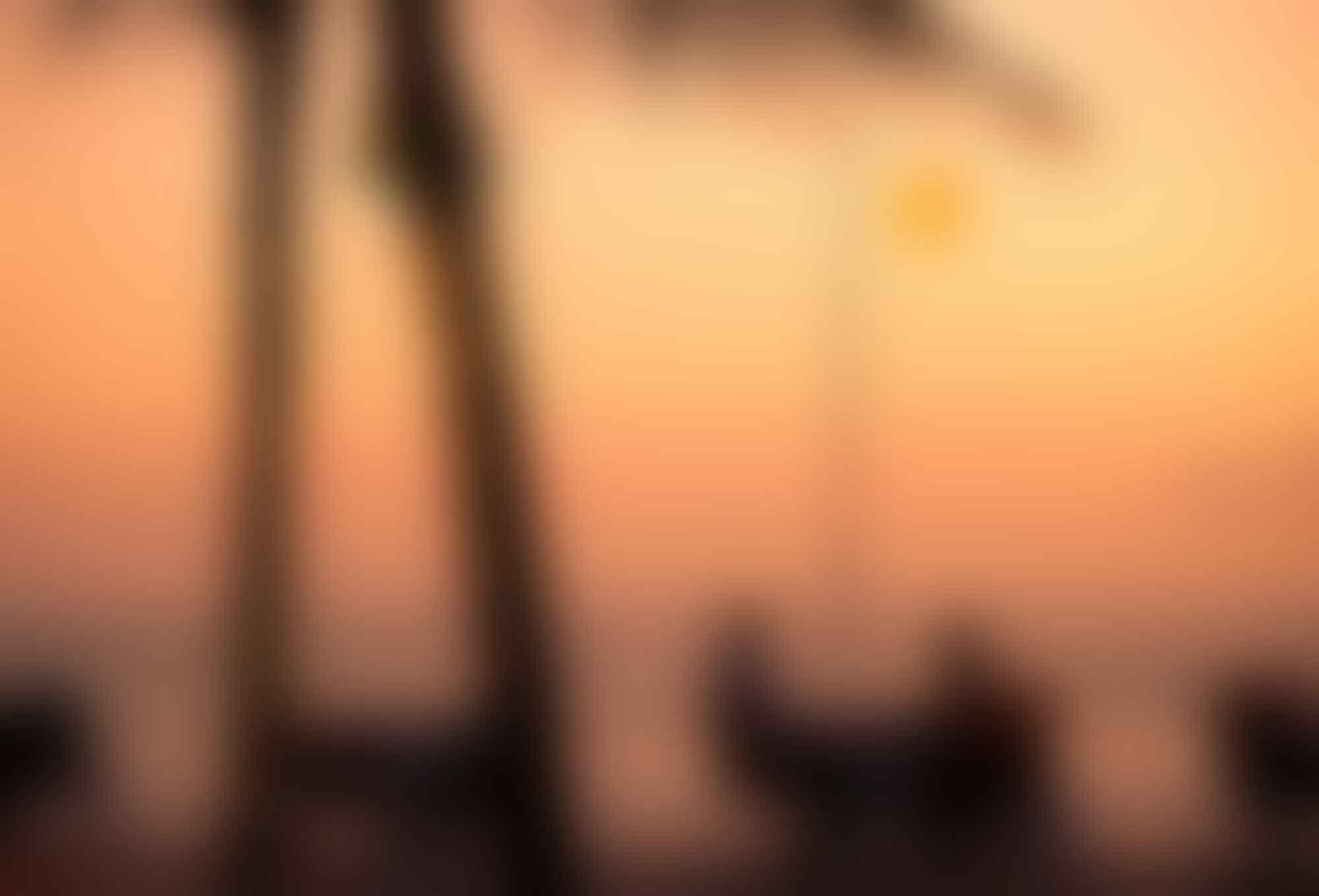5 Penginapan di Seminyak, Bali ini Tawarkan Fasilitas Private Beach
