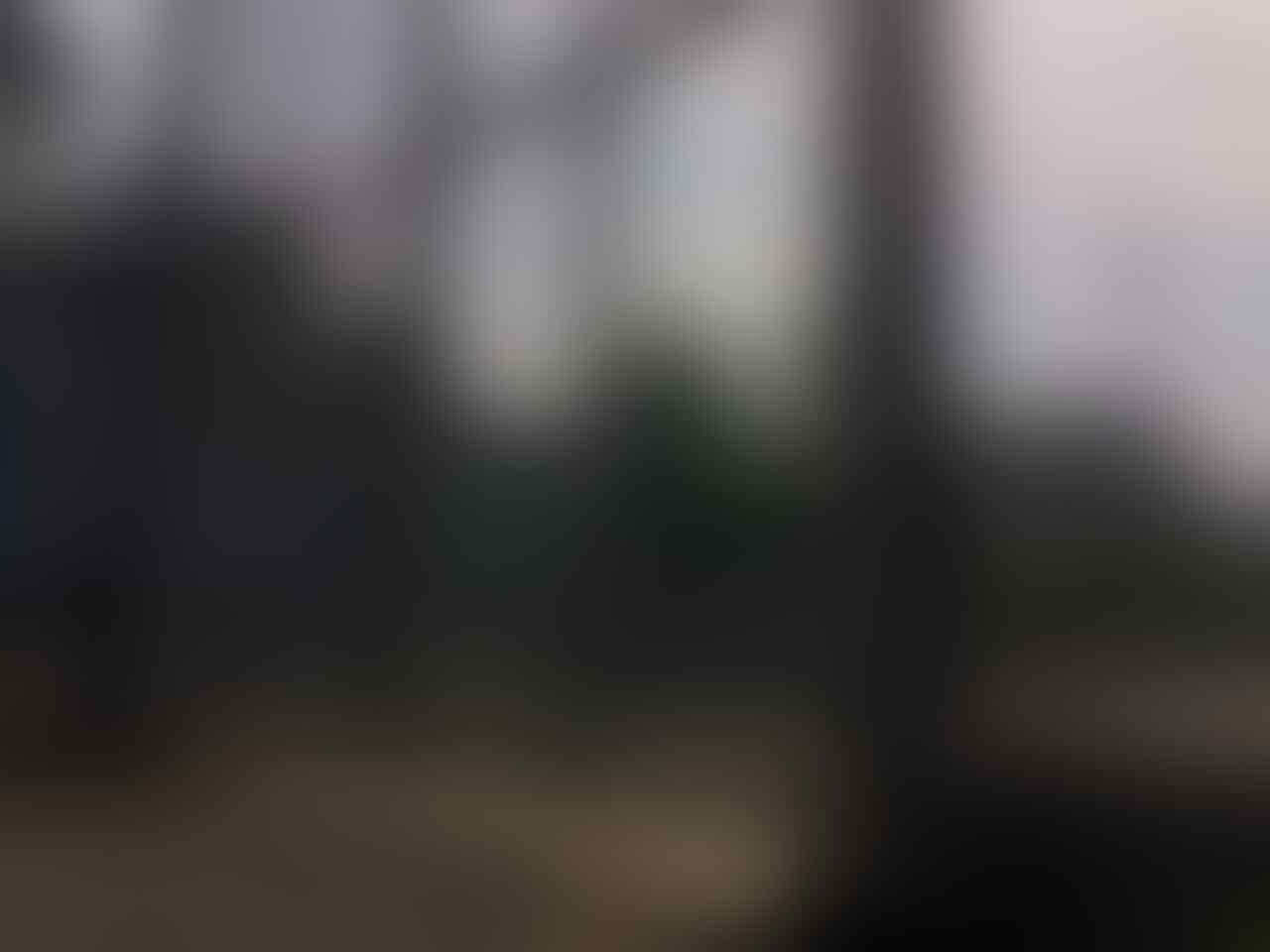 Lapas Khusus Napiter di Nusakambangan Kelar Akhir Tahun, Bisa Menampung 502 Orang
