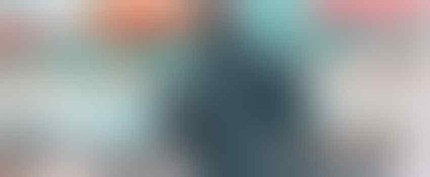9 Potret Seru Bermain bareng Lumba-lumba di Dolphin Island Singapura