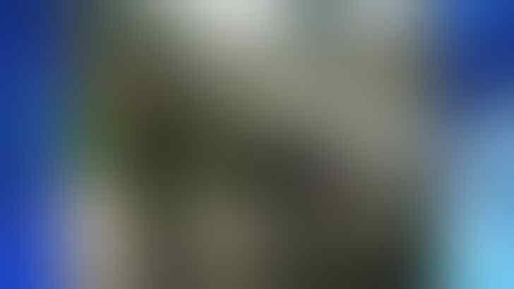 WADUH! Buaya Besar Sepanjang 8 kaki Menghajar POLISI sampe PINGSAN!+video