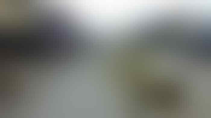 Tong sampah Rp9,5 miliar dari Jerman, langkah Pemprov Jakarta dianggap 'tidak tepat'