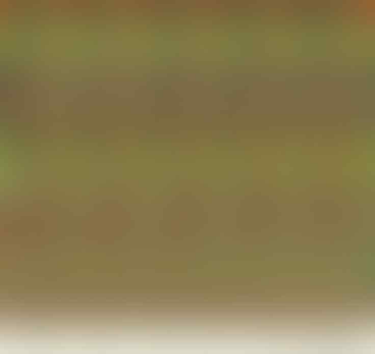 10 Gambar Ini Punya Objek 3D Tersembunyi Gan Sist. Ente Bisa Liatnya Gak?