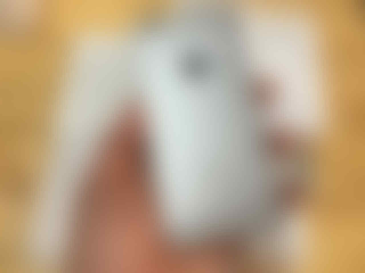IPHONE 6S GREY 16GB FU FULLSET MULUSS NORMAL MURAAHH 3200 SAJA [MALANG]