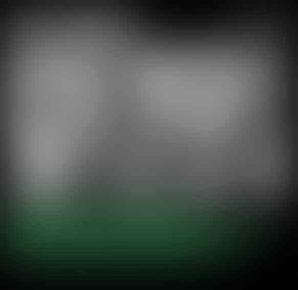 Karier Essien, dari Bintang Eropa Lalu Diputus Kontrak Persib