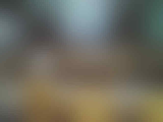 Astagfirullah , Ustadz Somad Kembali Dihina , Dia Disebut Sebagai ini
