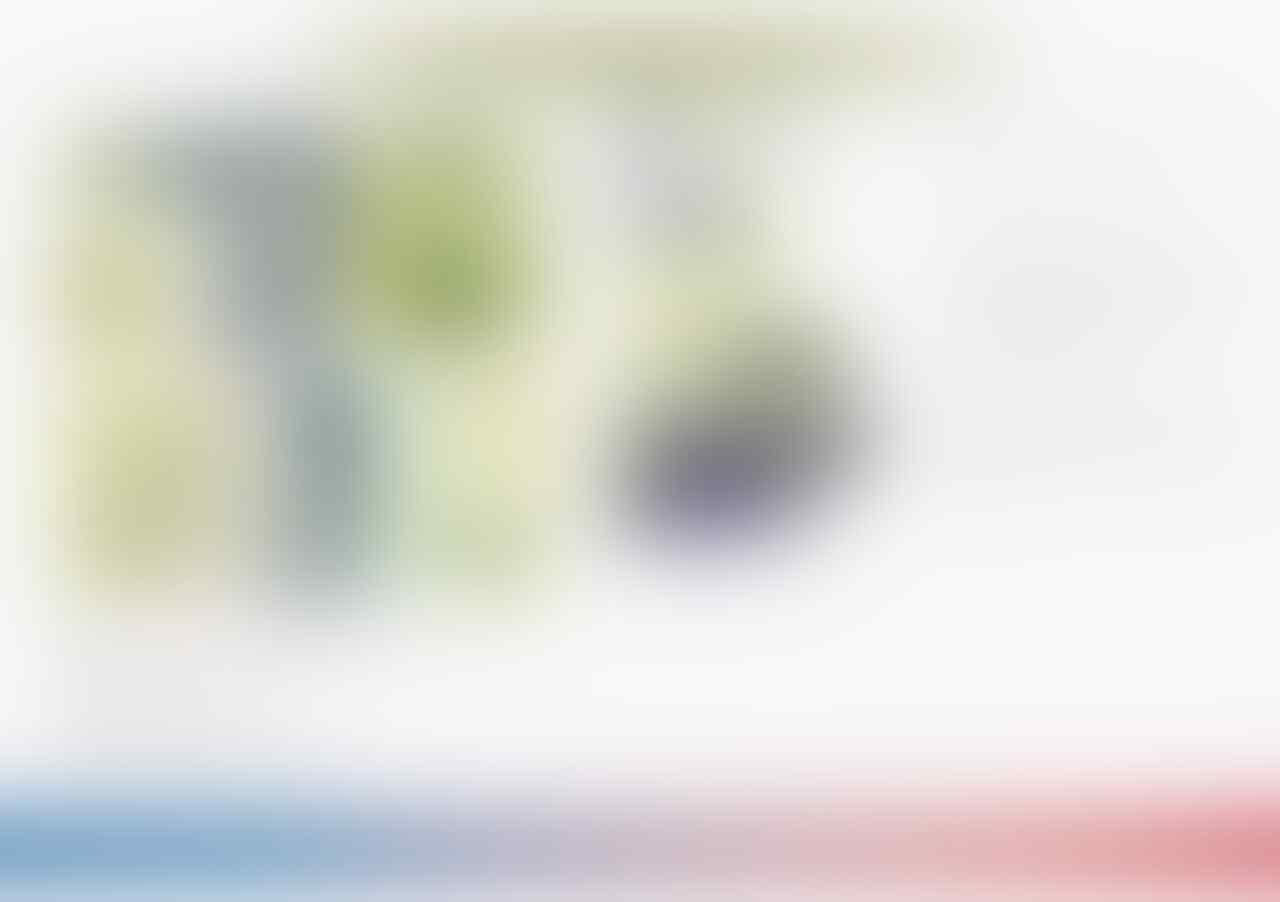Uang Rp 1.000 Gambar Cut Meutia Langka, Ini Penjelasan BI