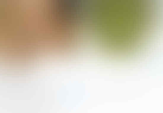Dituduh Cinlok Dengan Ahok, Grace Kantongi Identitas @Hulk_idn