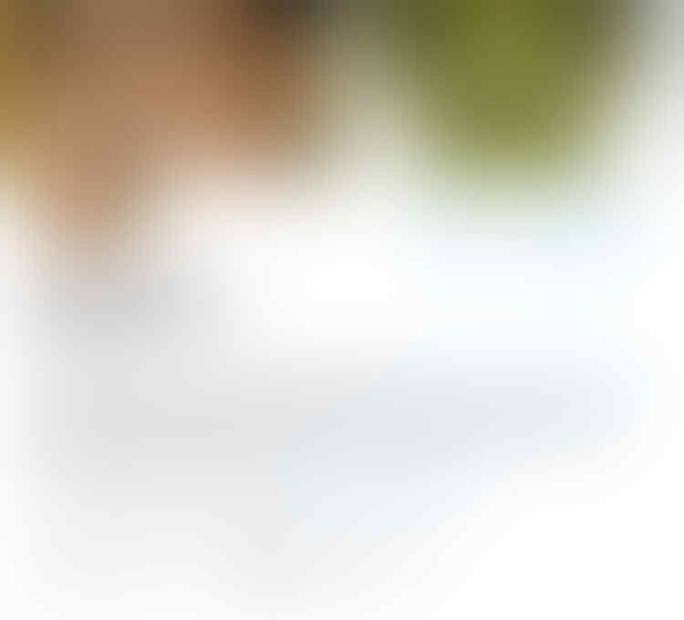 Dituduh Selingkuh dengan Ahok, Grace Natalie Kantongi Identitas Pemilik Akun