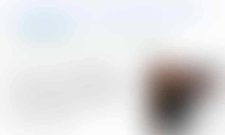 Amien: Tuhan Malu Tak Kabulkan Doa Ganti Presiden Jutaan Umat
