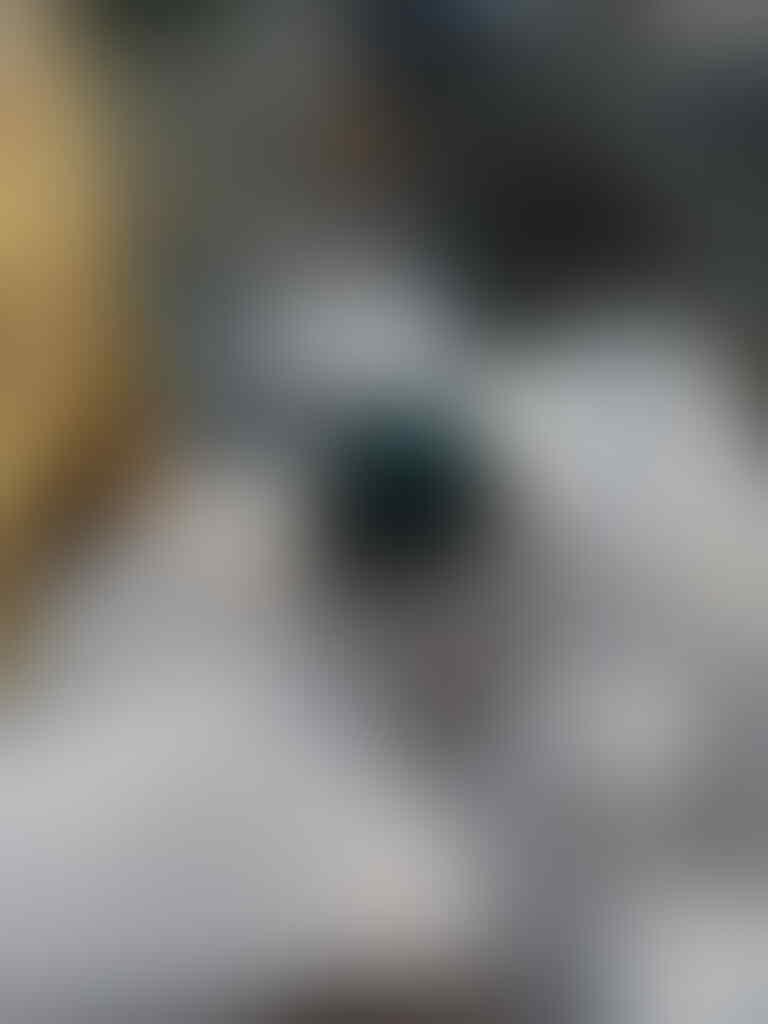 LELANG BACAN RUDAL DAN BACAN JUMBO CLOSE 11/06/17
