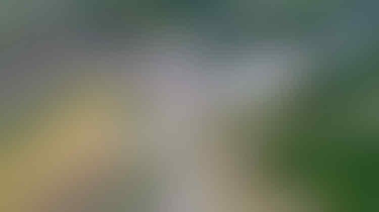 Selamat Tinggal Mudik Jakarta-Banyumas 24 Jam! Kini Cukup 10 Jam