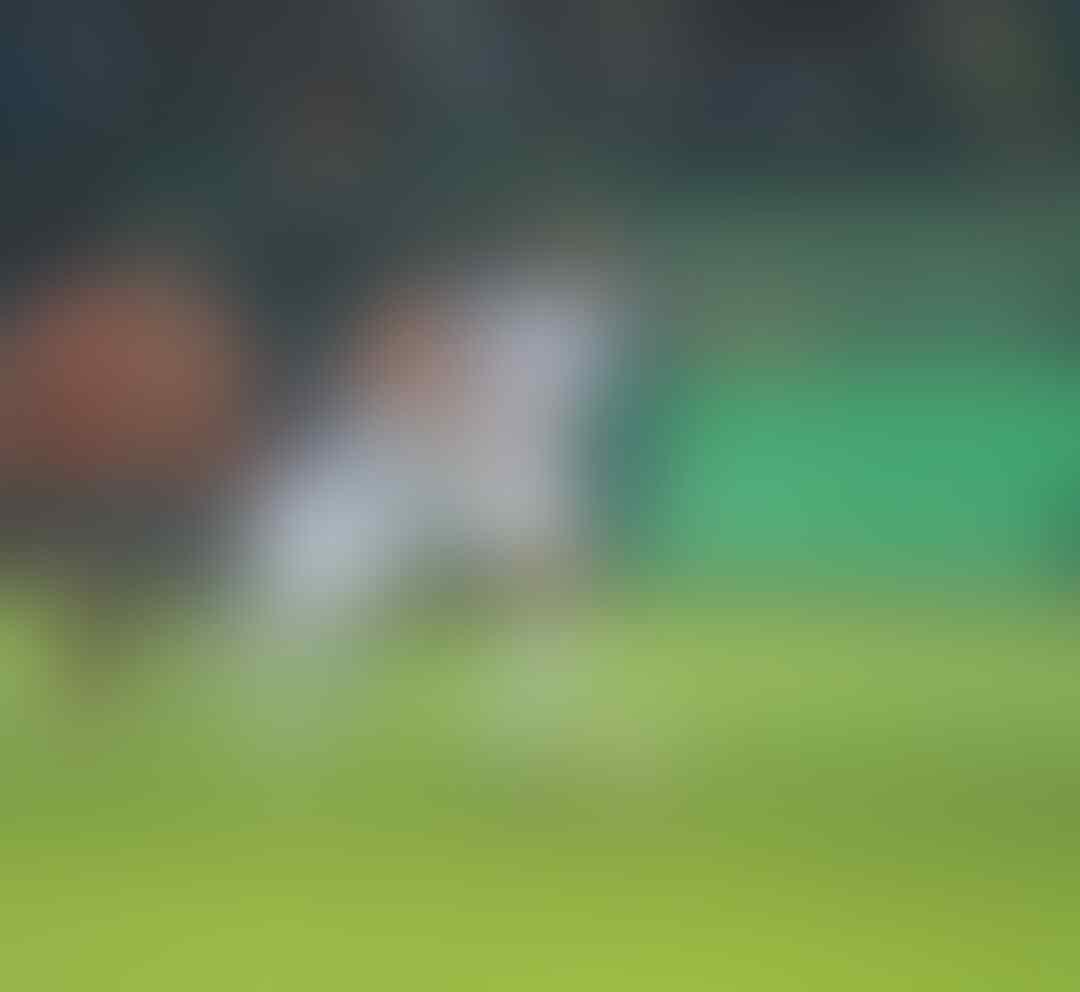 Ringkasan dan Hasil Klasemen Pekan ke-13 Liga 1 2018