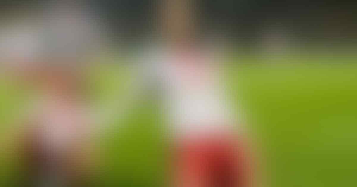Sejarah Denmark di Piala Dunia, Bukan Tim yang Diunggulkan