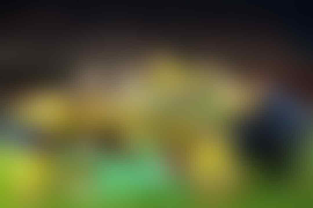 Tanpa Ibrahimovic, Ini Jurus Swedia Hadapi Piala Dunia
