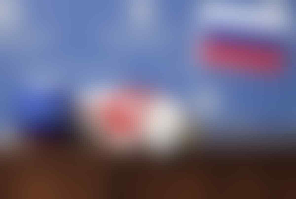 Akankah Achilles Tepat Ramalkan Hasil Laga Pembuka Piala Dunia 2018?