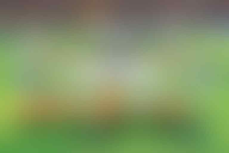 FOTO-FOTO: Meriahnya Pembukaan Piala Dunia 2018