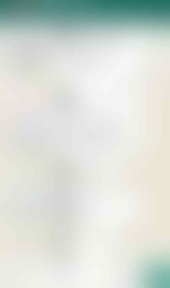 Dideklarasikan Jadi Capres 2019, Amien Rais Dapat Restu Habib Rizieq Shihab