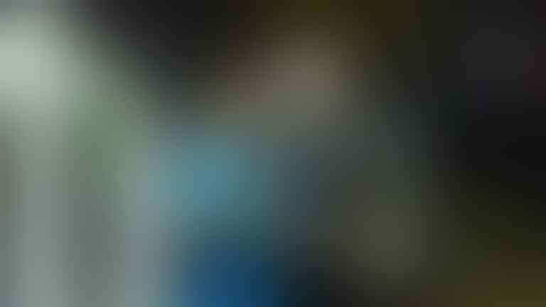 David Ospina: Kami Kalah, tapi Kami Bangga