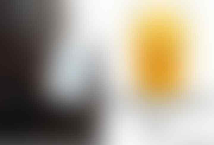 BABI BERBULU DOMBA HASIL BIOTEKNOLOGI ZIONIS ITU CUMA SPESIES BABI LANGKA