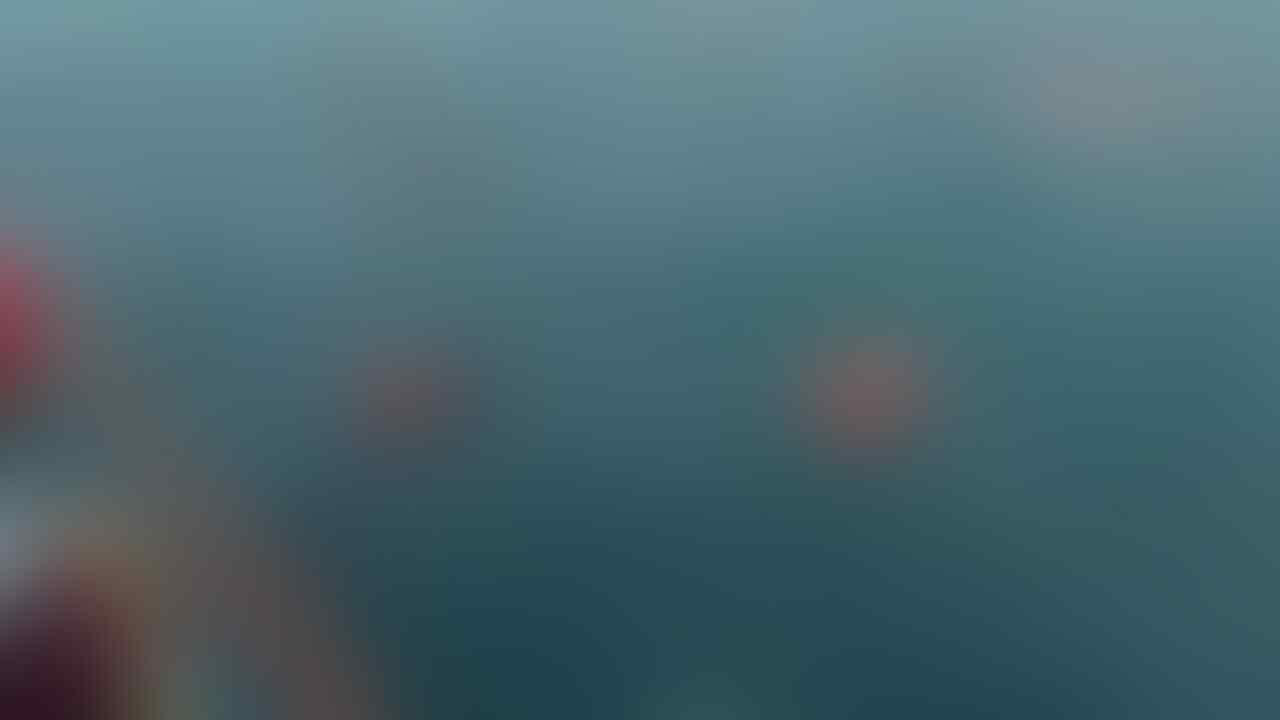 Transportasi Laut Program Nawacita, DPR Harus Desak Kemenhub Audit Menyeluruh