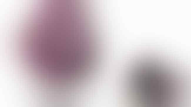 Ini Dia 7 Tas Termahal di Dunia yang Harganya Bikin Melongo