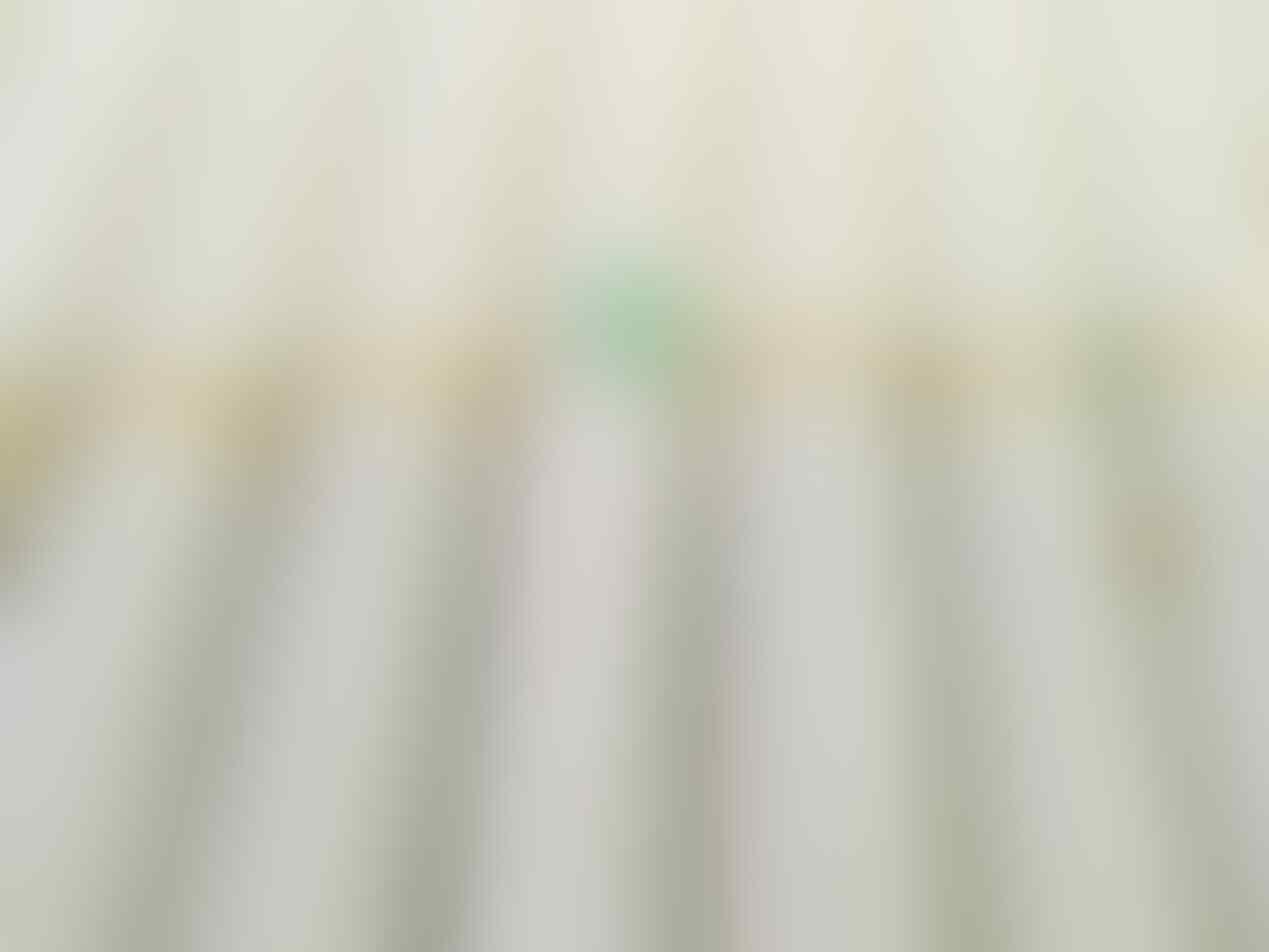 Bisnis jarigan rokok herbal Rotera